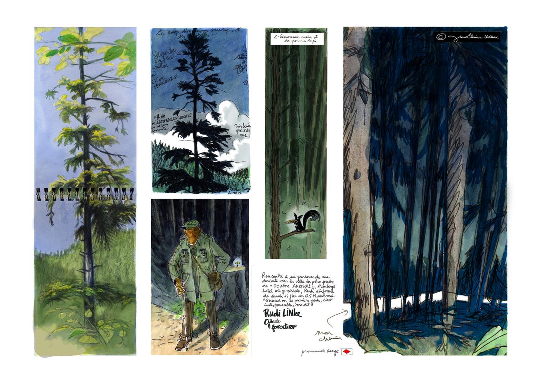 Promenade en Forêt Noire – Jean-Claire Lacroix